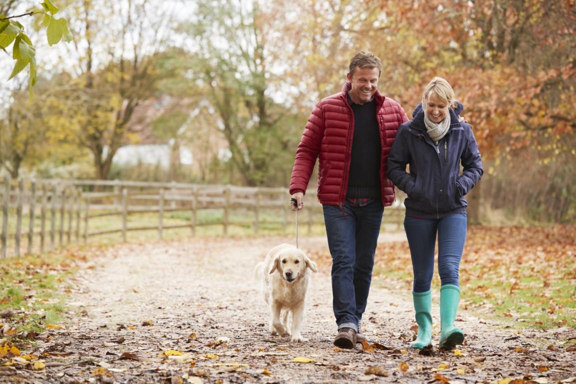 Welche Rolle spielen Freunde und Familie bei der Stressbewältigung