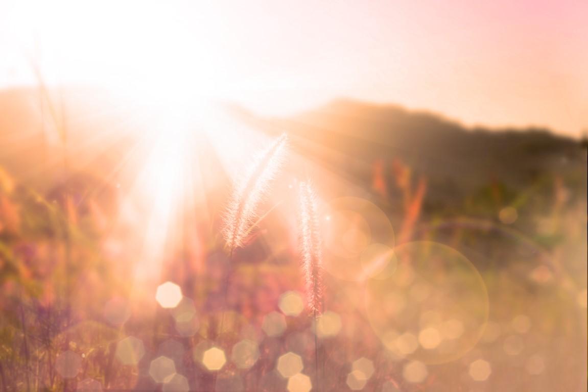 Achtsamkeitsübung – Bewusst Wahrnehmen